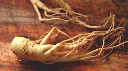 Il Ginseng e le sue proprietà curative