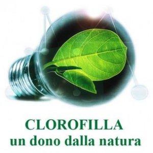 Clorofilin Herboplanet -ultimo pezzo