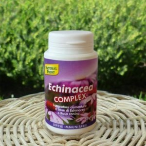 ECHINACEA COMPLEX Natural Point
