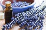 Olio essenziale di Lavanda Matherone BIO Dacor